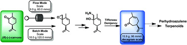 A practical deca-gram scale ring expansion of (R)-(−)-carvone to (R)-(+)-3-methyl-6-isopropenyl- cyclohept-3-enone-1